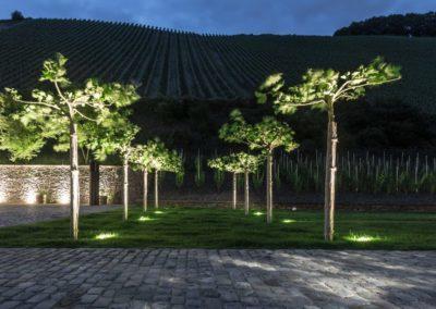 Gartenbeleuchtung 5