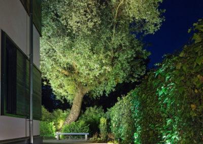 Gartenbeleuchtung Baum