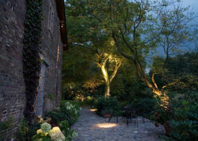 Gartenbeleuchtung Pflanzen