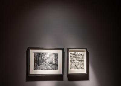 Beleuchtung-Showroom-32